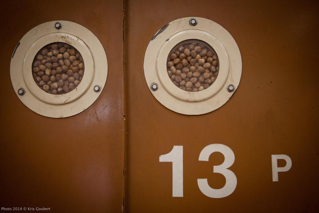 Hazelnut production in Piemonte- Italy